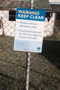 Brisbane City Council uses foot hold traps to harm catsFotohold