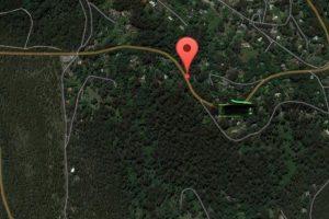 Dense forest where Luana was lost
